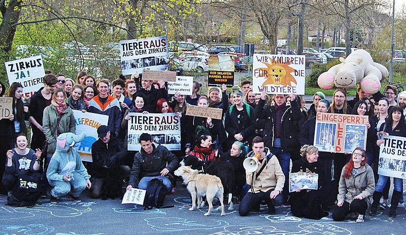 Protest gegen Wildtiere im Zirkus Charles Knie, Göttingen 2015