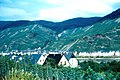 Zell vineyards in 1963.jpg