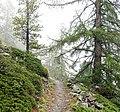 Zermatt - trail 11.jpg
