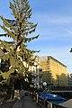 Zurich - panoramio (96).jpg