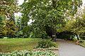 Аллеи Ботанического сада.jpg