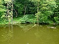 Верхнє озеро-ставок з Китаївського каскаду, стежина біля високого берега.JPG
