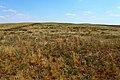 Вид с высоты 236,6 в юго-восточном направлении - panoramio.jpg