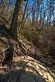 Витоки джерела Канава в верхів`ї яра близ поля.jpg