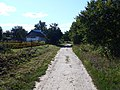 Дорога в центр - panoramio.jpg
