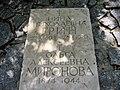 Могили матері і дружини О.С. Гріна.jpg