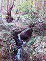 Смоларски водопад 39.jpg