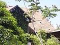 בית הפסטור שניידר חלק מגג התשבי 130 מרכז הכרמל חיפה.JPG