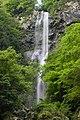 大樽の滝 - panoramio (1).jpg