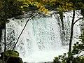 奧入瀨溪流 Oirase Mountain Stream - panoramio (2).jpg