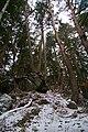 東野城ヶ峰神社02.jpg