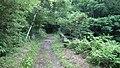 浅間山(前掛山登山道) - panoramio.jpg