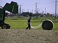 牧草(麦わら)ロール ロールベールラップサイロ6260452.jpg