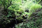 白岩の滝 - panoramio (14).jpg