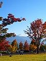 笛吹市フルーツ公園から富士山を眺める - panoramio.jpg