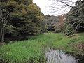 道保川公園 3.jpg