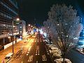 郡山市 昭和通り 堤下付近.jpg