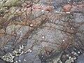 馬屎州岩石2.jpg