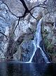 01-2007-DarwinFalls-lower.jpg