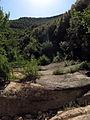 014 Vall del Rossinyol, afluent del Tenes, amb els cingles de Bertí al fons.JPG