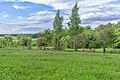 10 Остепненные склоны и балочные леса по правому берегу долины р. Осетрик.jpg