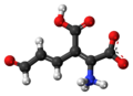2-Amino-3-carboxymuconic-semialdehyde-zwitterion-3D-balls.png