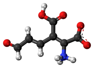 2-Amino-3-carboxymuconic semialdehyde - Image: 2 Amino 3 carboxymuconic semialdehyde zwitterion 3D balls