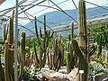 2008 07 Botanical Garden Meran 71450R0368.jpg