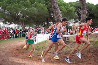 Cross country running - Runners at the 2010 European Cross Country Championships in Portugal.