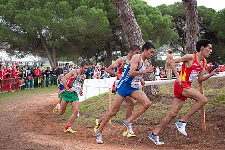 Runners at the 2010 European Cross Country Championships in Portugal 2010 European Cross Country Championships.jpg