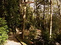 20121027 0687 Sintra 22.jpg