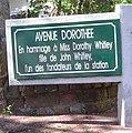 2013.05.06 - Avenue Dorothée.jpg