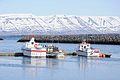 2014-04-29 15-17-42 Iceland - Sauðárkróki Sauðárkrókur.JPG
