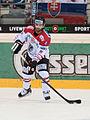 20150207 1830 Ice Hockey AUT SVK 9874.jpg