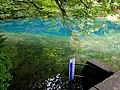 201707 Blautopf Blaubeuren 03.jpg