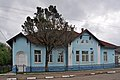 46-215-5011 Zhydachiv Cupressus RB 18.jpg