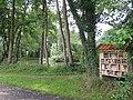 49849 Wilsum, Germany - panoramio - Roland Meijerink (8).jpg