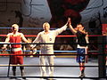 4th Boxing Gala E. Mavropoulos21.JPG