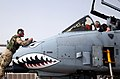 A-10 Warthog nose maintenance.jpg