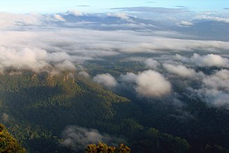 Wollumbin National Park - From summit at sunrise