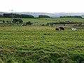 A69 near Heddon-on-the-Wall - geograph.org.uk - 1028050.jpg