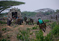 AMISOM & Somali National Army operation to capture Afgoye Corridor Day 2 19 (7300582676).jpg