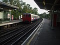 A Stock at Ickenham.JPG