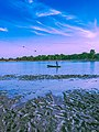 A boy fishing.jpg