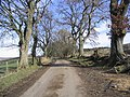 A country road - geograph.org.uk - 341607.jpg