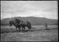 A man ploughing with two horses. ATLIB 286191.png
