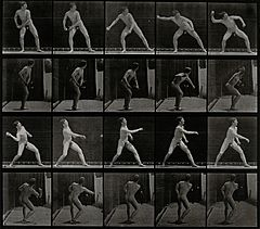 A man throwing a ball. Photogravure after Eadweard Muybridge Wellcome V0048665.jpg