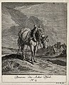 A plough horse standing in a field with a farm house in the Wellcome V0021148ER.jpg
