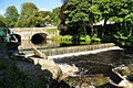 Abbey Bridge and Weir on the River Tavy in Tavistock (4923).jpg