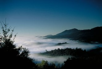 Spring Mountain District AVA - Above the Napa Valley